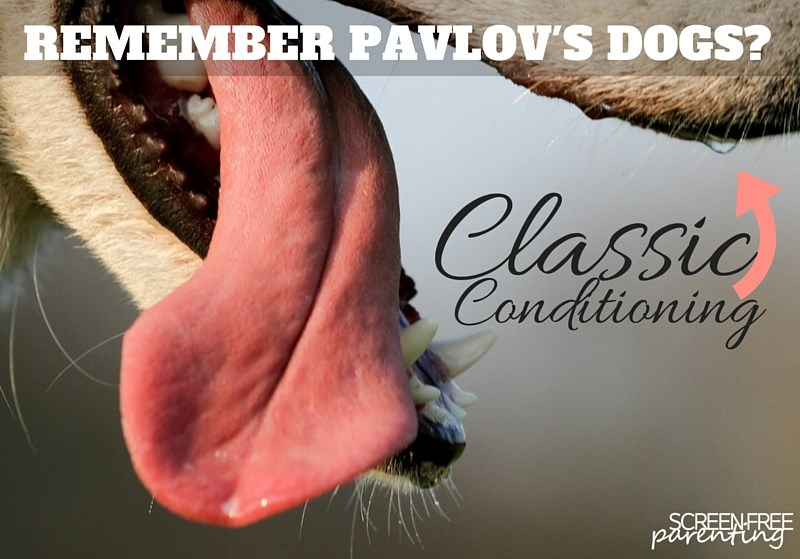 pavlov's dogs classic conditioning