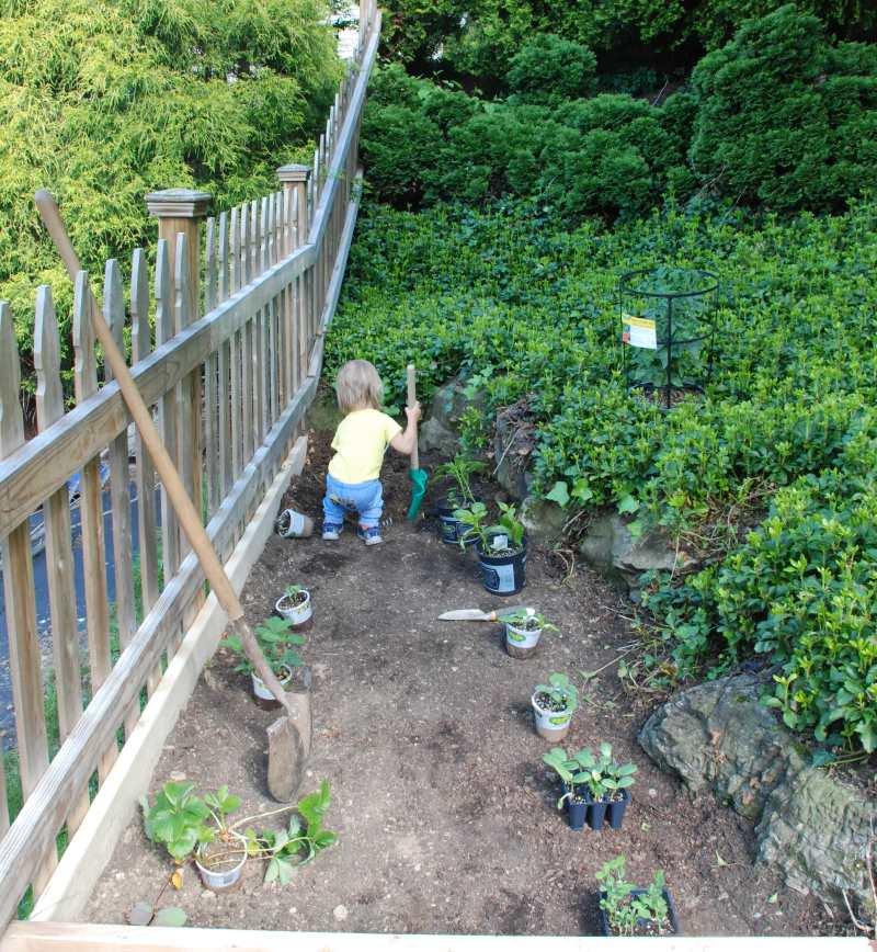 35 Fascinating, Easy-to-Do and Unique DIY Raised Garden ... |Vegetable Garden Screen